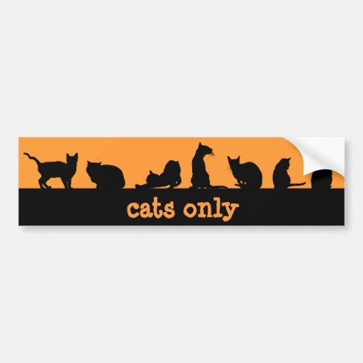 nur Katzen Autoaufkleber