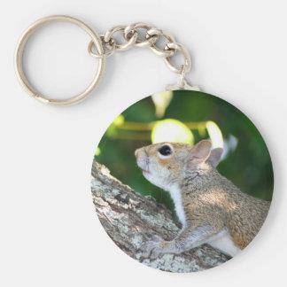 Nuss-Jäger keychain Schlüsselanhänger