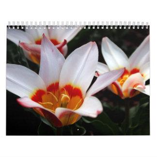 NY Frühjahrskollektion 2009 Kalender