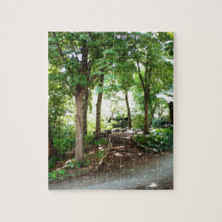 NYC Central Park-Spur Puzzle