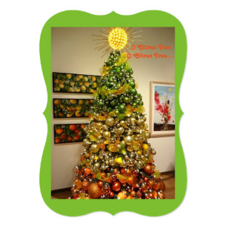 O-Zitrusfrucht-Baum-Foto-Weihnachtskarte von Karte