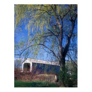 Obere überdachte Brücke Berkshires MA Sheffields Postkarte