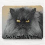 Oberst Meow Mauspad