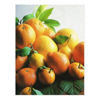 Obst und Gemüse, Orangen und Zitronen Postkarte
