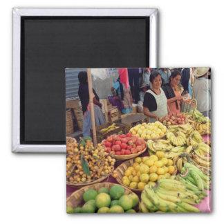 Obst- und Gemüse Stall Magnets