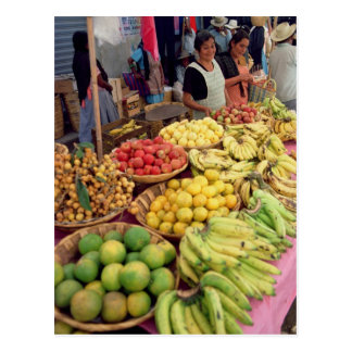 Obst- und Gemüse Stall Postkarte