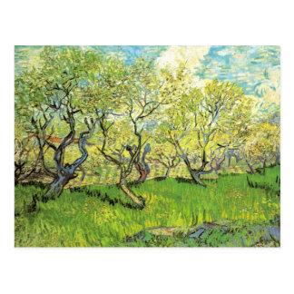 Obstgarten in der Blüte durch Vincent van Gogh Postkarte