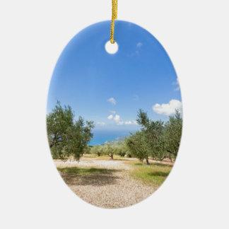 Obstgarten mit Olivenbäumen in Meer in Keramik Ornament