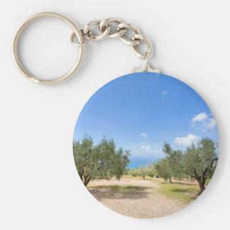 Obstgarten mit Olivenbäumen in Meer in Schlüsselanhänger