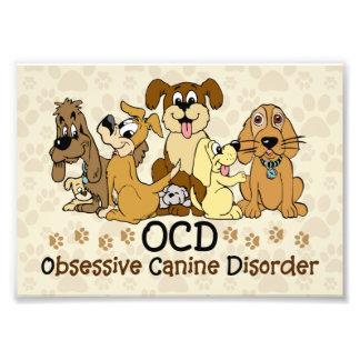 OCD besessene Hunde- Störung Photographischer Druck