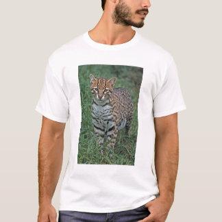 OCELOT Leopardus pardalis) MITTELAMERIKA T-Shirt