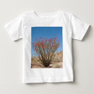 Ocotillo Baby T-shirt