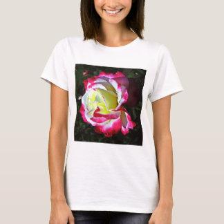 Offener Verstand/unterschiedliche Ansicht T-Shirt
