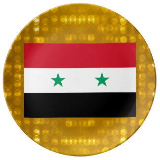 Offizielle syrische Flagge Porzellanteller