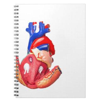 Öffnen Sie vorbildliches menschliches Herz auf Notizblock