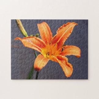 Offsettageslilien-u. -lebewesen-Blumenpuzzlespiel Puzzle