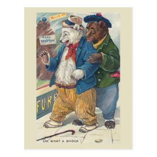"""""""Oh, was ein Schock-"""" Vintage Bären Postkarte"""