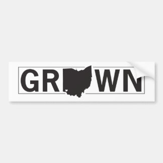 Ohio gewachsen. Cincinnati hob an Autoaufkleber