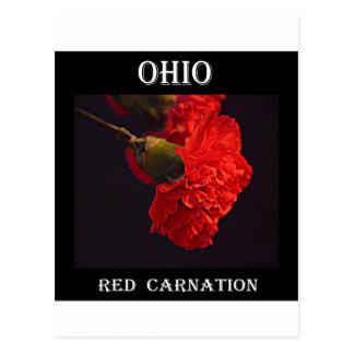 Ohio-Rot-Gartennelke Postkarten