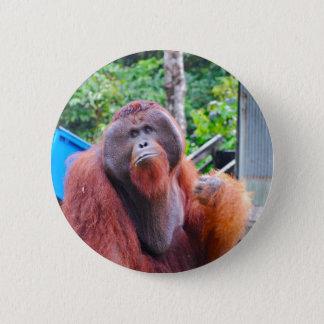 OIrangutan König am Lager Leakey Runder Button 5,1 Cm