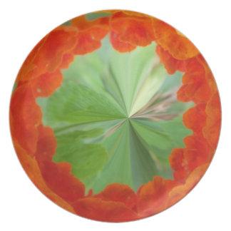 Öko-Vintage grüner Salat-Hochrot-Platte Teller