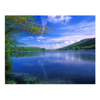 Oktober-GebirgsStaats-Wald Berkshires Postkarte