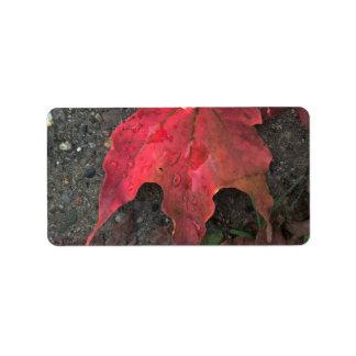 Oktober-Sonnenaufgang Adressaufkleber