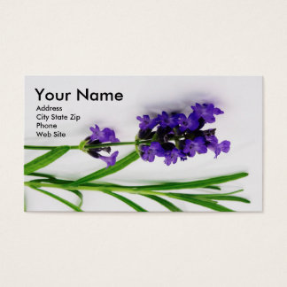 Öl-Visitenkarten mit Lavender2 Visitenkarte