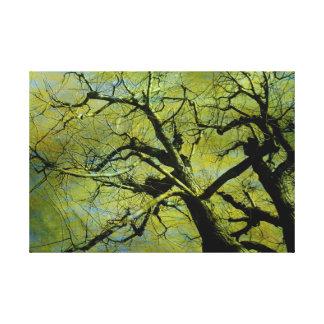 Old tree2 gespannter galerie druck