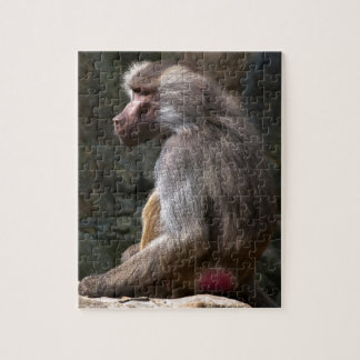 Olive Baboon Puzzle