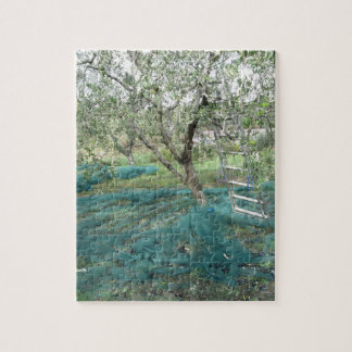 Olivenbaum im Garten Puzzle