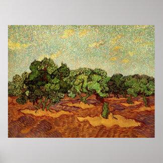 Olivenhain-hellblauer Himmel Van Gogh, schöne Poster