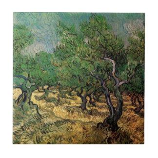 Olivenhain Van Gogh, Vintage Landschaftsfeine Fliese