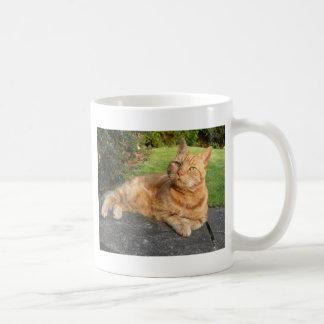 Oliver-Katze Kaffeetasse