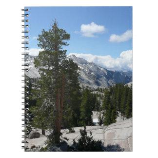 Olmsted Punkt III in Yosemite Nationalpark Spiral Notizblock