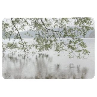 Olympischer Nationalpark des See-Halbmond-|, WA Bodenmatte