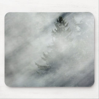 Olympischer Nationalpark | Hoh River Valley Mousepad