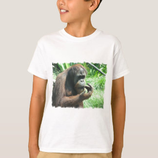 Orang-Utan Affen-T - Shirt