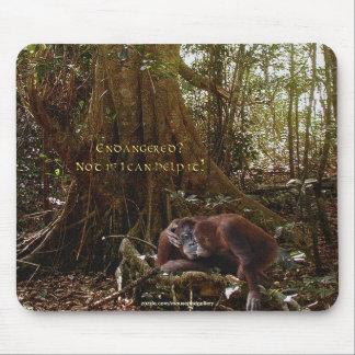 Orang-Utans u. Regenwald Tier-Unterstützung Mousepad