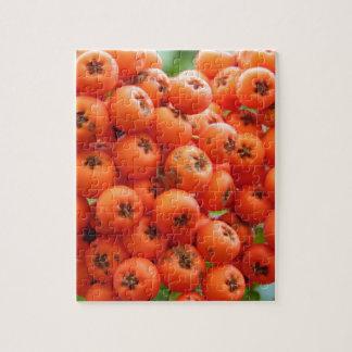 Orange Beeren Puzzle