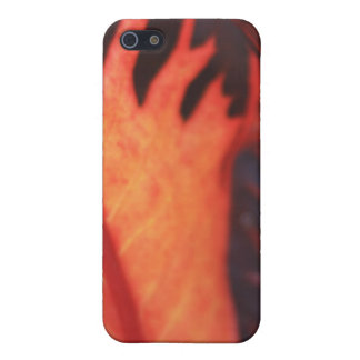 Orange Blatt iPhone 5 Cover