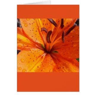 Orange Blumen-Karte Karte