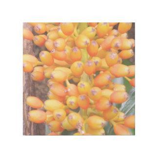"""Orange Blumen-Samen 12"""""""" Verpackung der Galerieleinwand"""