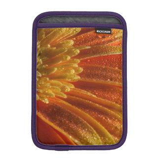 Orange Blüte mit den bunten Blumenblättern iPad Mini Sleeve
