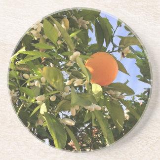 Orange Blüten Sandstein Untersetzer