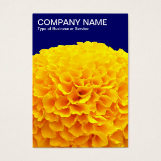 Orange Chrysantheme - tiefe Marine Visitenkarte