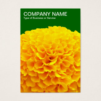 Orange Chrysantheme - tiefes Gras-Grün 006600 Visitenkarte