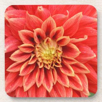 Orange Dahlie-Blume des Singles Getränkeuntersetzer