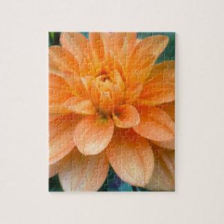 Orange Dahlie Puzzle