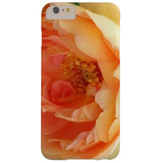 Orange erröten Rose Barely There iPhone 6 Plus Hülle
